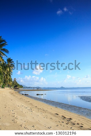 View of nice tropical beach with some palms around ,Samui,Thailand