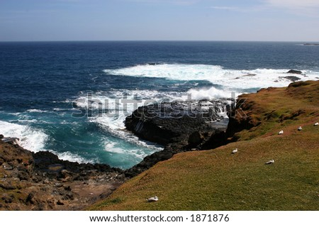 View of Philip island. Photo taken near Nobbies and Seal Rocks (Australia, Victoria)
