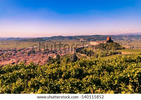 view of Soave (Italy) surrounded by vineyards that produce one of the most appreciated Italian white wines, and its famous medieval castle.
