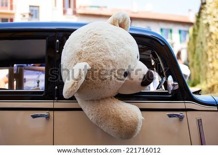 View of teddy bear inside a car  - stock photo