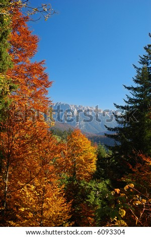 View of the alps through a break in brightly colored trees - stock photo
