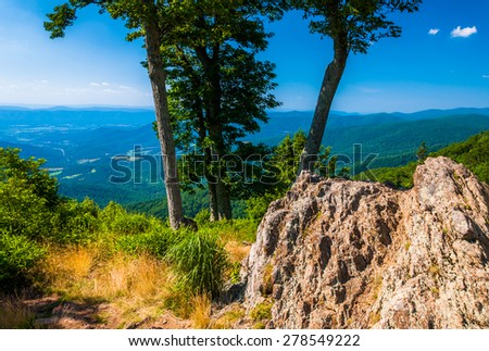 View of the Blue Ridge and Shenandoah Valley behind rocks and trees at Jewell Hollow Overlook, on Skyline Drive in Shenandoah National Park, Virginia. - stock photo