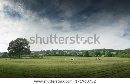 View of the English countryside - stock photo