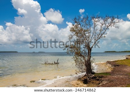 View of the Florida Bay at the most southern point of The Everglades National Park, called Flamingo Point - stock photo