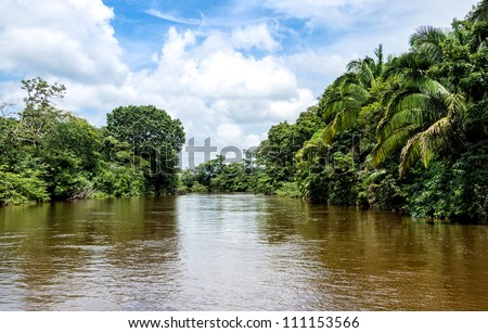 View of the Frio River in the Ca���±o Negro Wildlife Refuge in Costa Rica. - stock photo