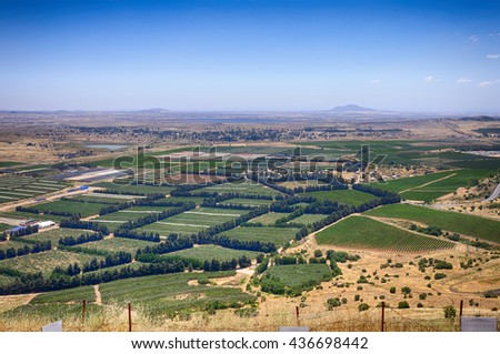 View of the Golan Heights in the summer . North Israel.  - stock photo