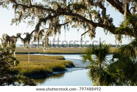 View of the Marsh on Cumberland Island, Georgia