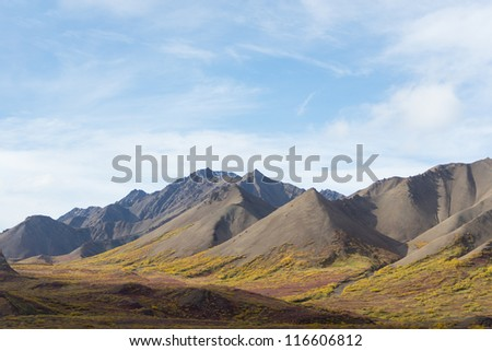 View of the mountains from Polychrome Pass in Denali National Park, Alaska