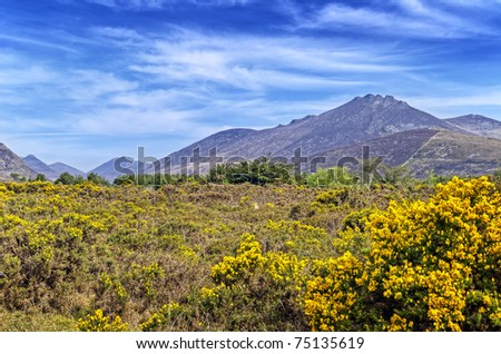 View of the Mourne Mountains, Ireland. - stock photo