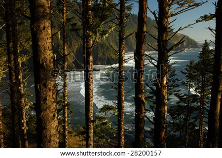 View of the Oregon coast seen through the trees. - stock photo