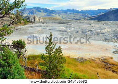 view of the plateau in Mammoth Hot Springs area of Yellowstone National Park, Wyoming - stock photo