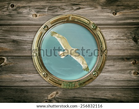 View Of The Seagull Through A Porthole  - stock photo