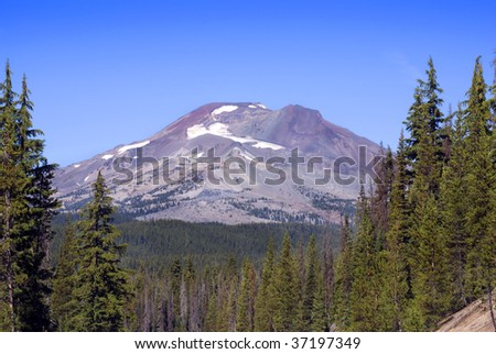 View of the South Sister Mountain (of the Three Sisters) in Oregon, through the pine tree forest. - stock photo