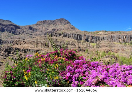 view of the volcanic landscape in Fataga, Gran Canaria, Spain - stock photo