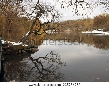 View of Van Cortlandt park in winter during the day. - stock photo