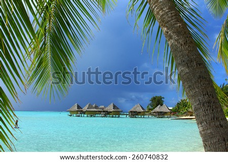 View of water bungalows framed by palm trees in Bora Bora - stock photo