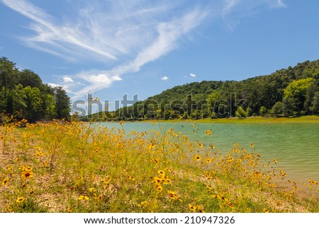 View of wildflowers and lake at Panther Creek State Park - stock photo