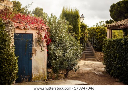 View of yard in Saint Tropez, French Riviera - stock photo