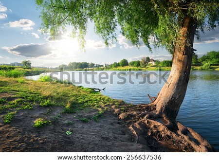 View on a calm river in sunny day - stock photo