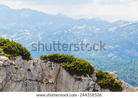 View on Alps, rocks with small pines and lake Hallstattersee from Krippenstein Plateau in Austrian Alps  - stock photo