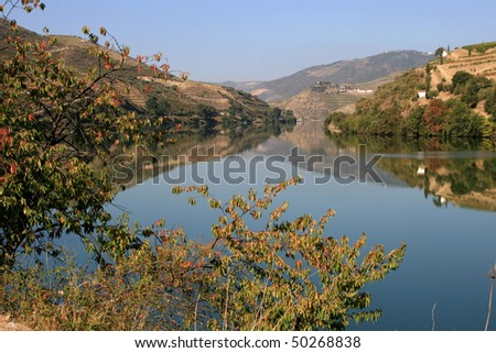 View on Douro river and on vineyards, Portugal - stock photo