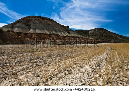 view on field of dried wheat in hot stone desert of bardenas, spain