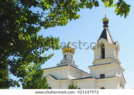 view on golden crosses of church through green tree