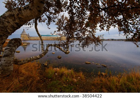 View on Karelia birch on Holy Lake and Solovetsky Monastery. Ru