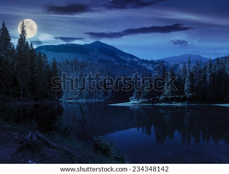 view on lake from shore  near the pine forest on mountain background with high vista at night in full moon light - stock photo