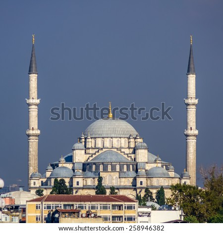View on mosque in Istanbul, Turkey