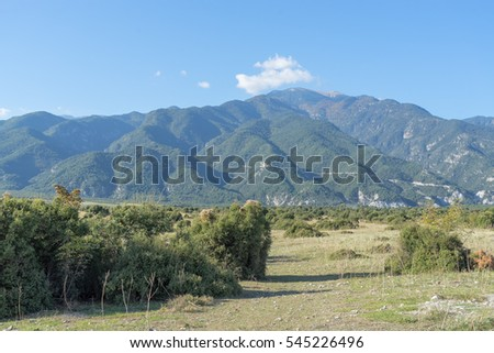 View on Mount Olympus ridge with Indian summer foliage on slope at sunny day. Prionia, Pieria, Greece.