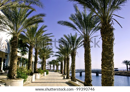 View on promenade in the northern beach of Eilat city, Israel - stock photo