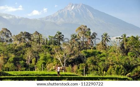 View on Rinjani volcano in Lombok, Indonesia - stock photo