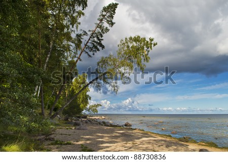 View on sandy beach and Riga gulf (Baltic Sea) near fisherman villages of Kaltene and Roja, county of Kurzeme, Latvia