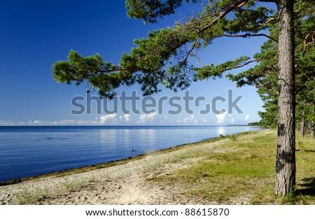 View on sandy beach of Riga gulf near resort village Engure, Latvia, Europe - stock photo