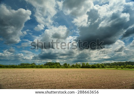 View on the cultivated fields and woods in background at sunny spring day