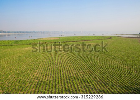 View on the field from the world famous U-bein wooden bridge near Mandalay in Myanmar, Burma. - stock photo