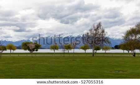 View on Wanaka lake tree row from Wanaka village.