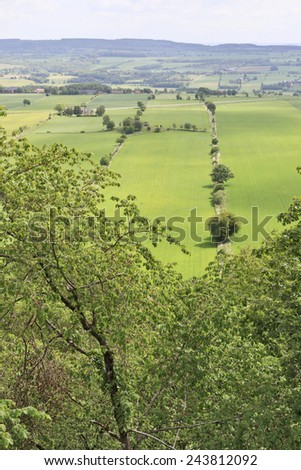 View over fields of crops with trees - stock photo