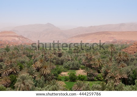 View over the second largest oasis in Morocco