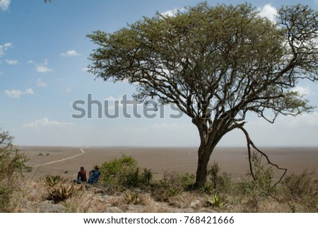 View over the Serengeti, the endless plain