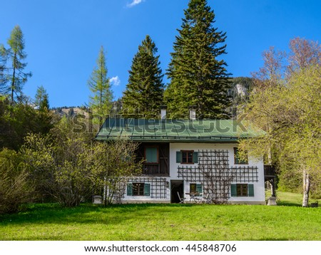 View to a typical traditional austrian house with a wooden roof, black door, windows with two shutters, decorative grid with twine plants - blue sky, mountains peak and green forest in the background