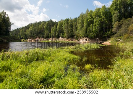 view to the mountain river in summer surrounded by forest and sandstone cliffs - stock photo