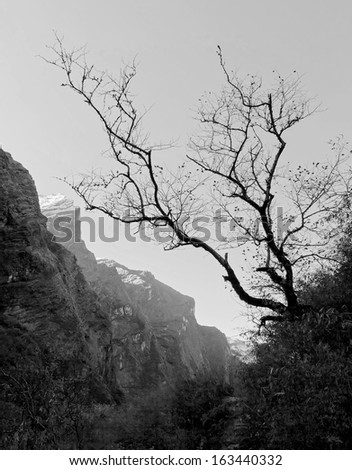View to the south from Deurali early in the morning - Nepal, Himalayas (black and white) - stock photo