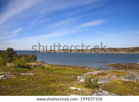 View with a fjord and lake in Norway during summer - stock photo