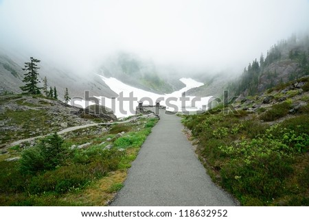 viewpoint in mist at mountain baker, washington, usa