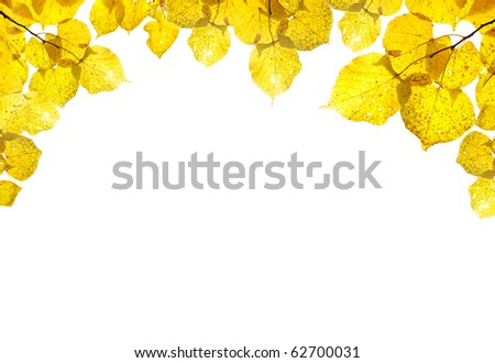 vignette from the bright autumn foliage isolated on the white - stock photo