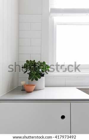 Vignette of pot plant and ornaments on classic kitchen bench top - stock photo