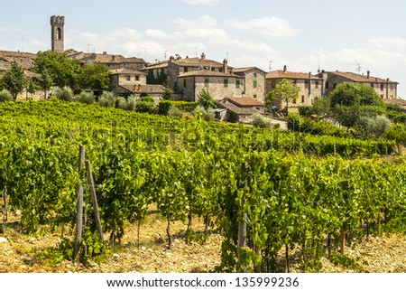 Villa a Sesta (Siena, Chianti, Tuscany, Italy) - The ancient village and the vineyards - stock photo