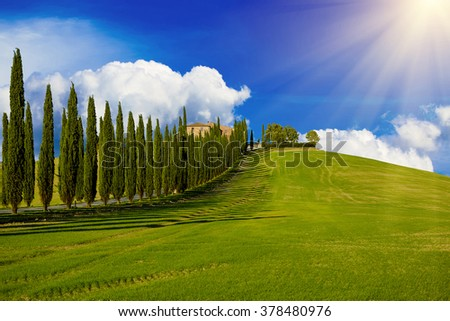 Villa in Tuscany with cypress road and blue sky with white clouds, idyllic seasonal nature landscape vintage hipster sunny background  - stock photo